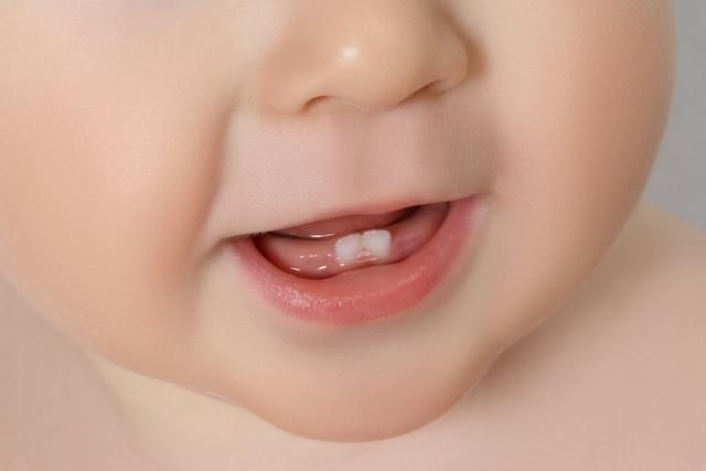 os primeiros dentes do bebê